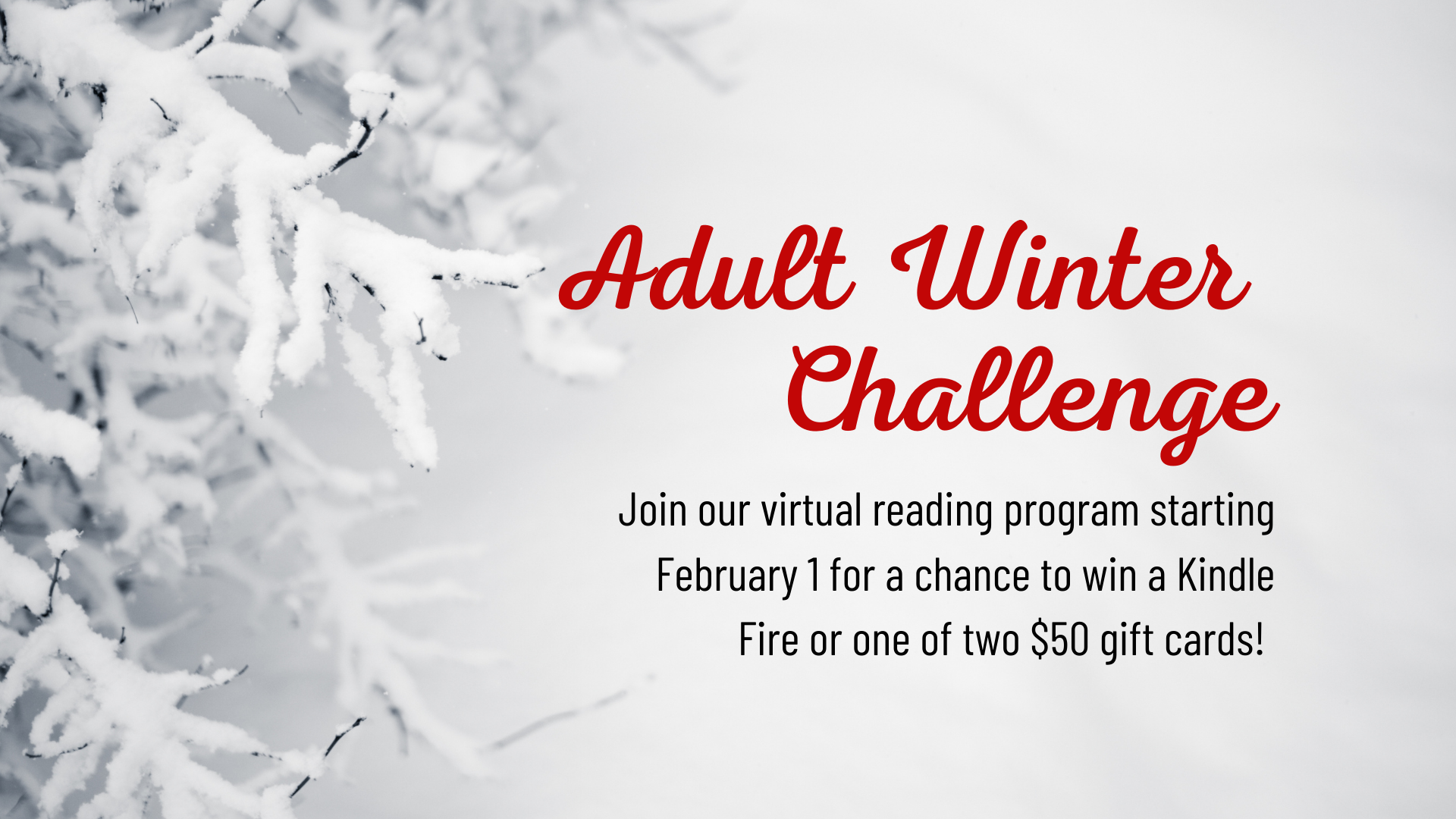 Adult Winter Reading Challenge Begins