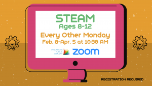 STEAM - Ages 8-12 (Zoom)