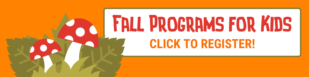 Image features the Fall 2021 Programs for Kids logo